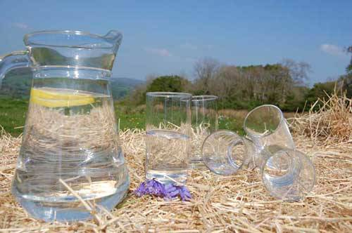 jug and glasses sitting outside