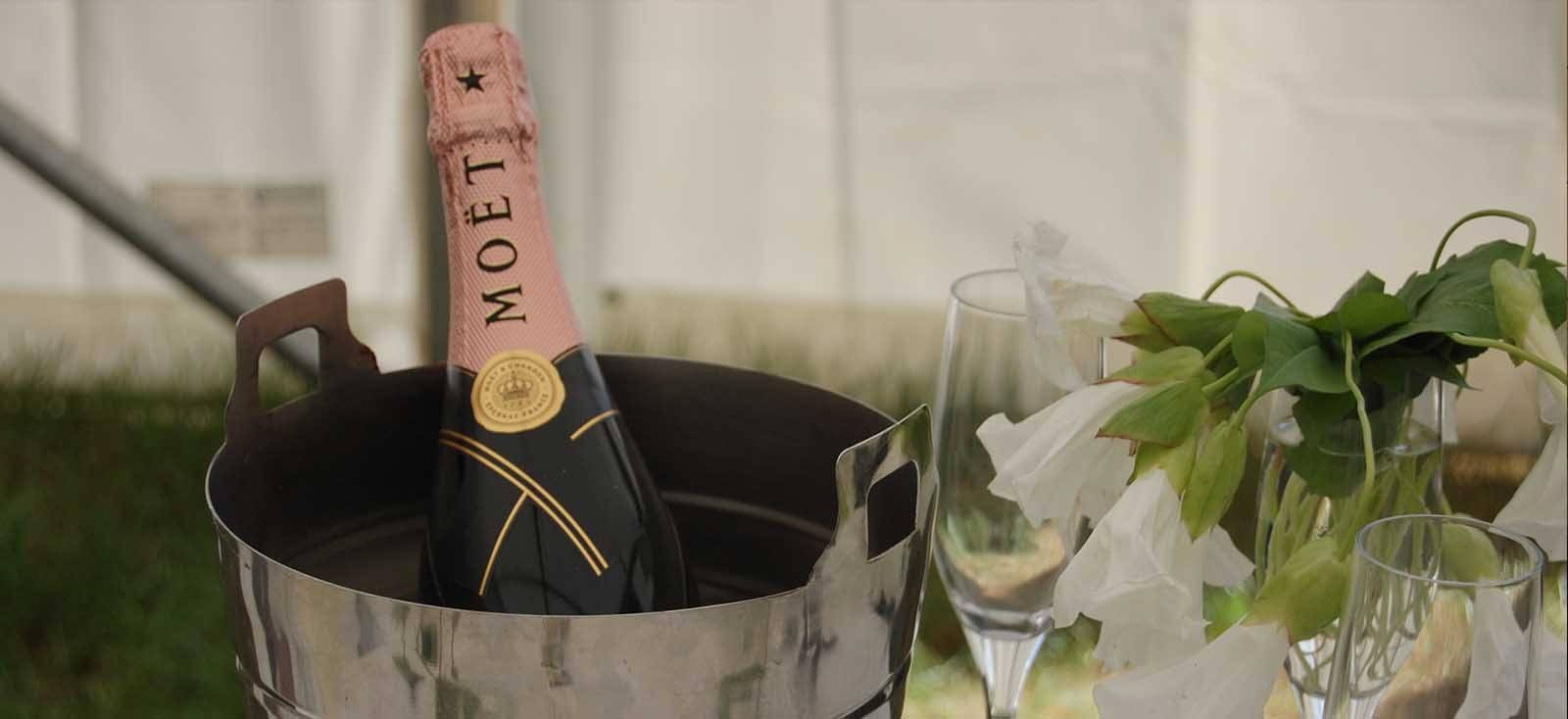 champagne in chiller bucket in glamping tent suite